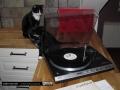 aphilips-22af729-vs-audiocats-filon-stefan
