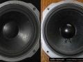 Quadral Rondo - W 170M  and W 170K woofers